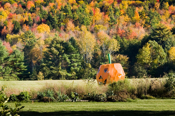 An Oversized Pumpkin Ornament at a Roadside Farm