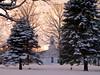 Town Common in Winter, Rumney NH