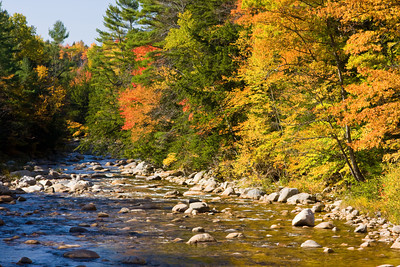 New England Mountain Stream in Autumn