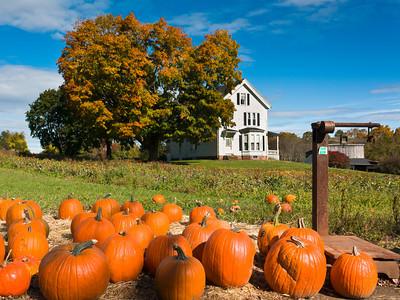 Autumn Harvest, Brown Spring Farm, West Newbury, Massachusetts