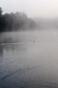 Shaker Pines Lake, Summer 2011