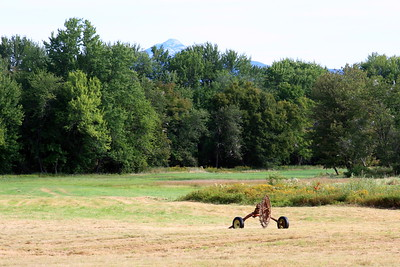 Making Hay, White Mountain National Forest, Tamworth New Hampshire
