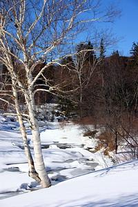 Bartlett New Hampshire