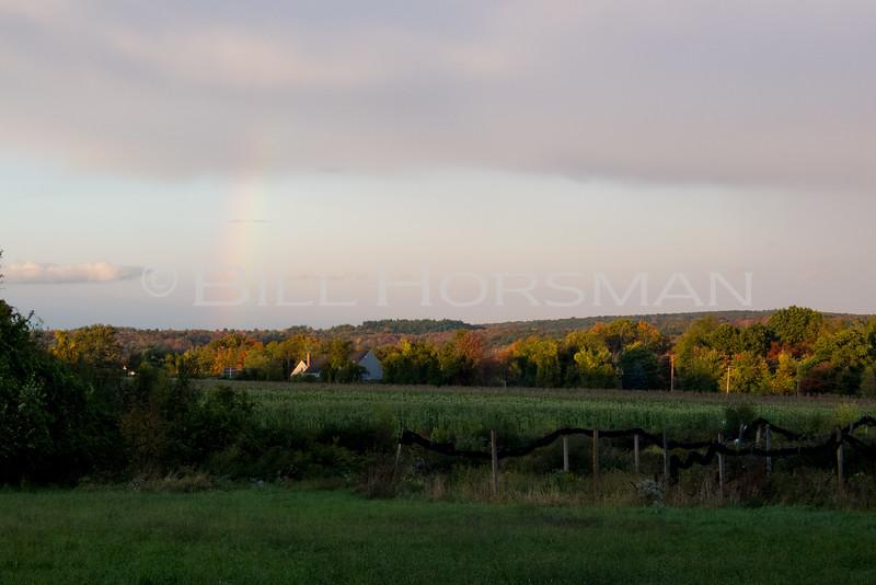12-rainbow-20