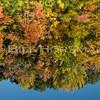 08-FallFoliage-043