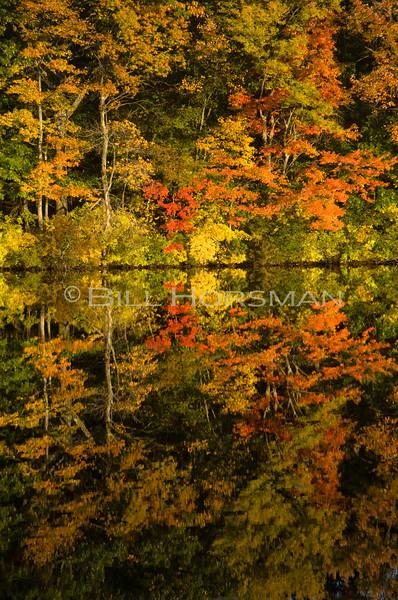 08-FallFoliage-149