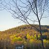 house nestled in sprintime hillside