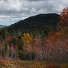 Leaves Turning on the Kancamagus