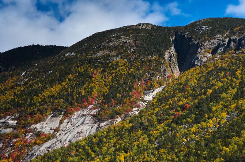 Rock Face near Crawford Notch