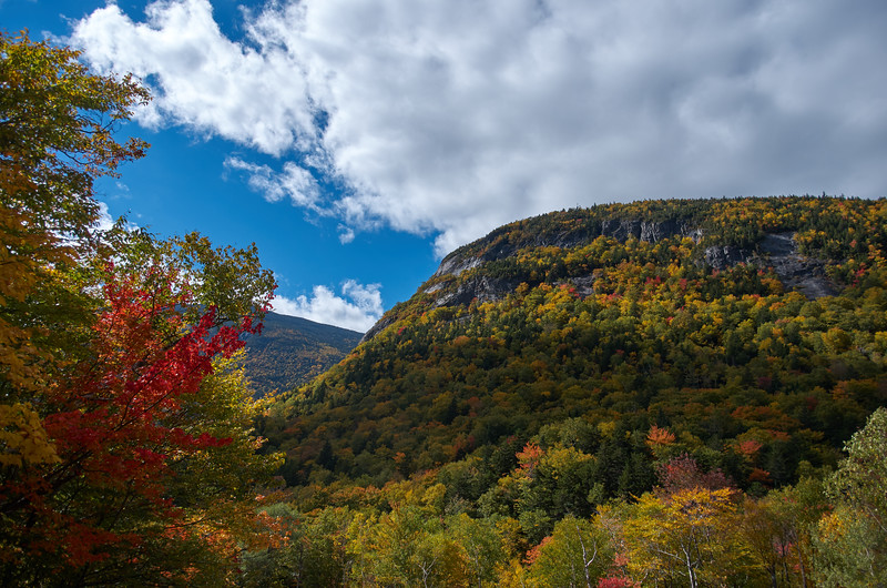 Color at Crawford Notch