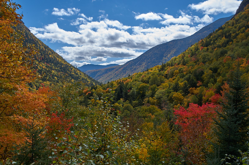 View South into Crawford Notch