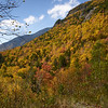 Crawford Notch, fall