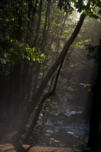 Sabaday brook