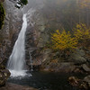 Glen Ellis falls with mist
