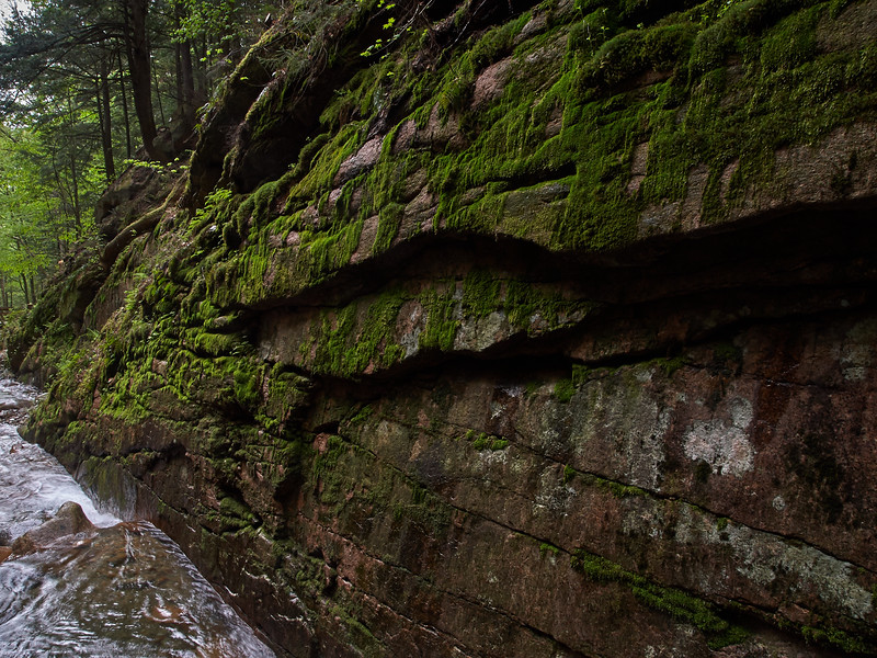 Mossy Wall, the Flume
