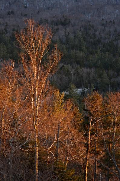 Winter light on the Kancamagus