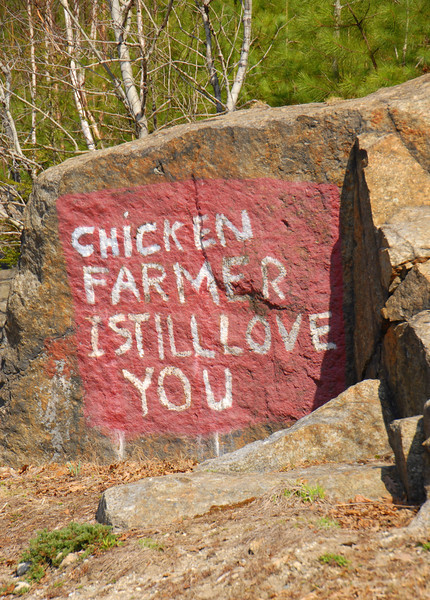 Route 103 in Newbury, NH painted rock