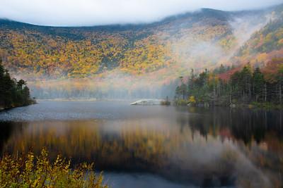 Beaver Pond in the fog