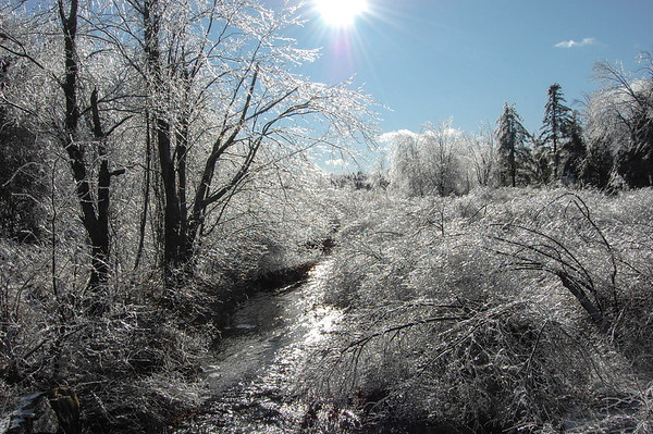 Beauty from the ice storm of 2008