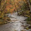 Autumn Stream, New England