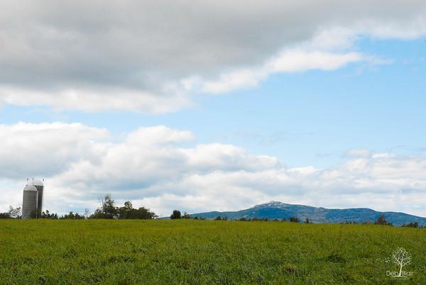 Green pastures at Sawyer Farm/Mt. Monadnock, Jaffrey, NH 2013