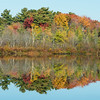 Long Pond Reflection
