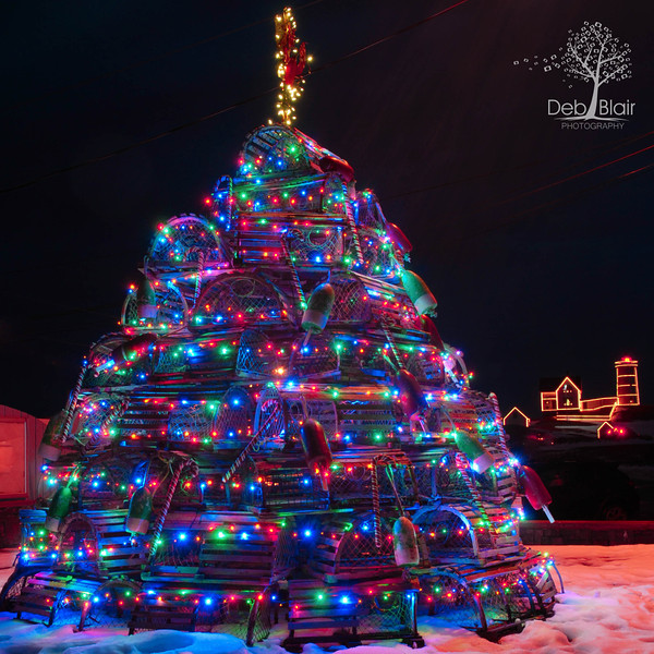 Lobster Trap Christmas tree Fox's Lobster House, York, Maine 2013