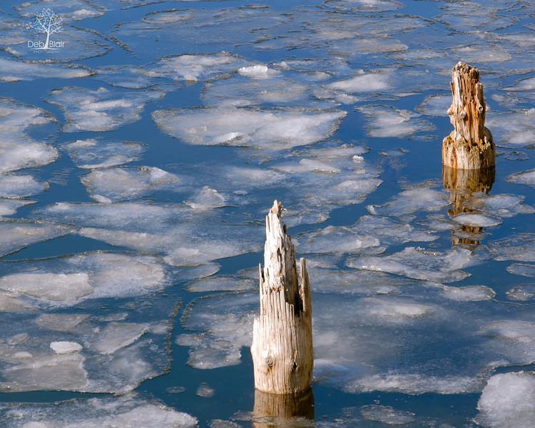 Frozen posts/Ogunquit Maine