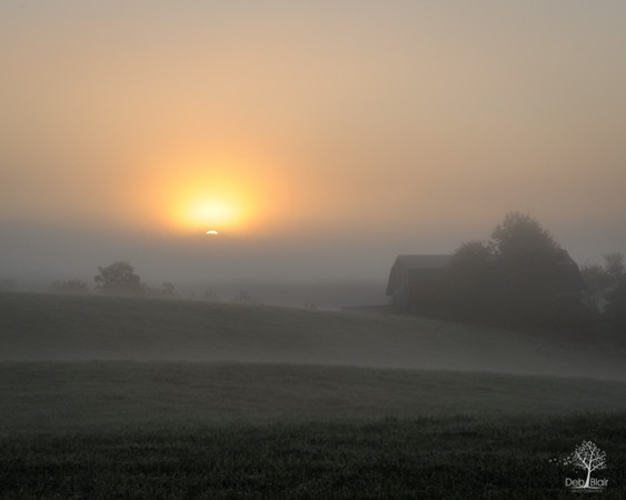 Foggy Sunrise - Harrisville, NH