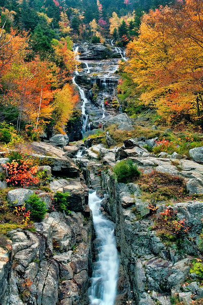 Silver Cascade Fall Color