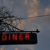 Peterborough Diner Neon Sign1