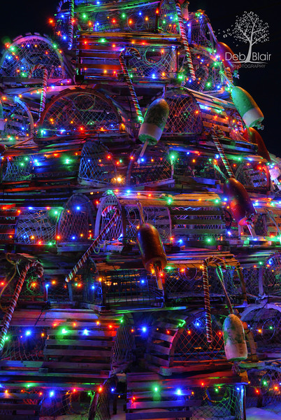 Lobster Trap Christmas tree Fox's Lobster House, York,Maine 2013