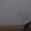 Foggy Morning in Bedford