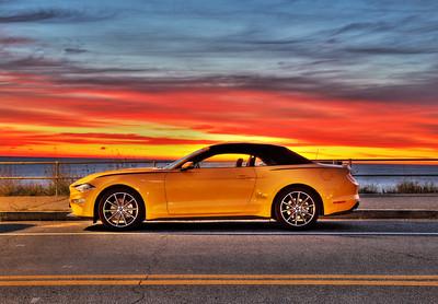 Mustang Sunrise