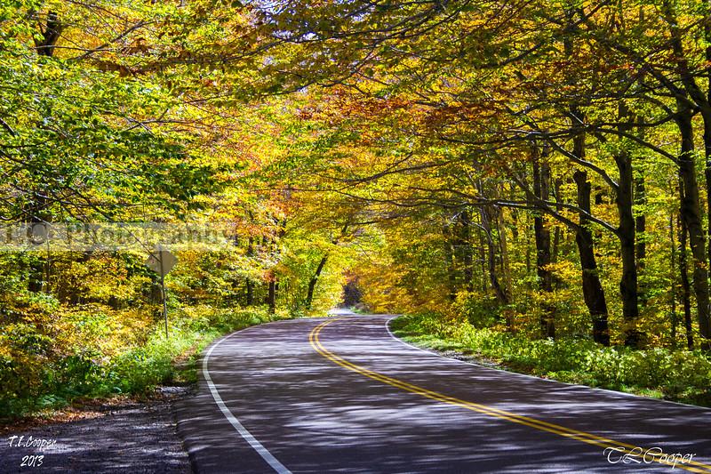 Fall Road near Stowe, VT