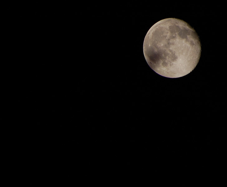 Harvest Moon 2009