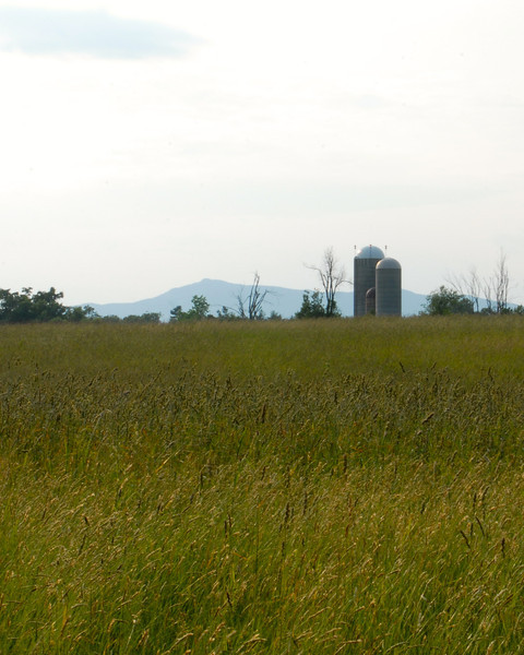 Field View of Sawyer Farm and Mount Monadnock