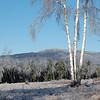 Mt. Monadnock - Ice Storm 2009