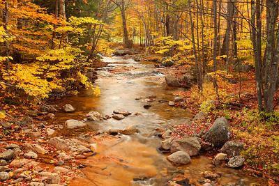 Stream and Fall Colors Kancamagus Highway New Hampshire