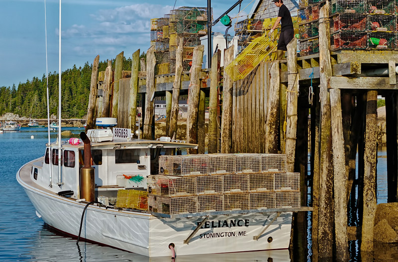 Stonington, Maine<br /> Captain Randy Sheppard