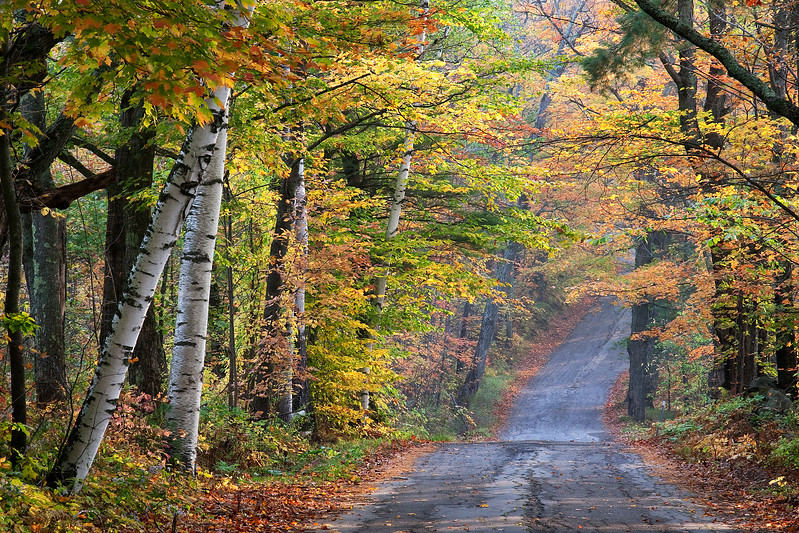 Autumn scenery in New Hampshire