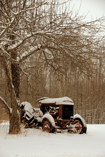 Old Tractor - Lydeborough, NH