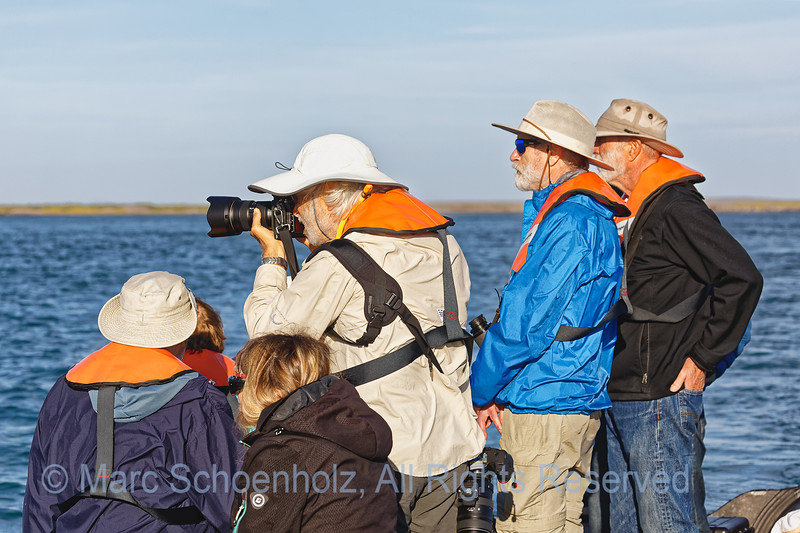 Fellow Adventurers, watching Grey Whales.