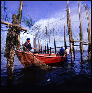 Seine Fishing for Herring, New Brunswick - 1985