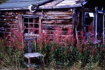 Mendenhall Landing, Yukon - 1984