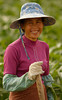 Friendly Worker, Xishuangbanna