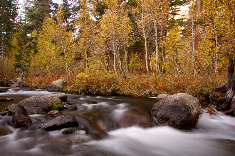 Autumn, Bishop Creek