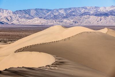 Dune #5