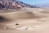 Death Valley Dune-2