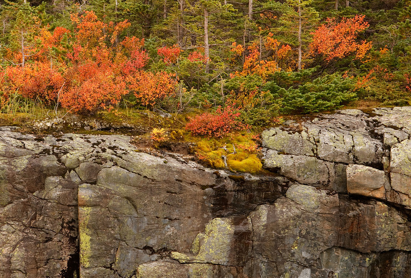 Fall Color and Granite